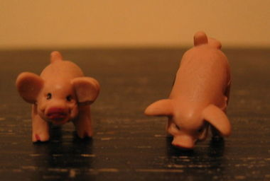 800pxpass_pigs_dice